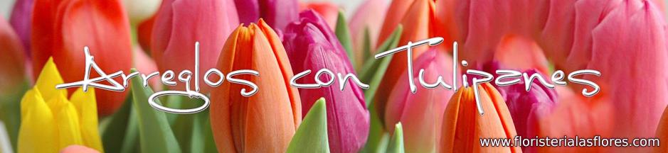 envio de tulipanes en guatemala