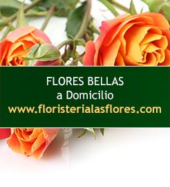 envio de flores a domicilio en guatemala