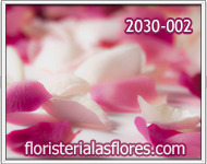 petalos en guatemala