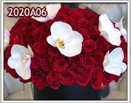 regalar rosas y orquideas en guatemala