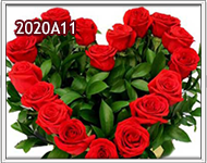 rosas formando un corazon