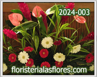flores para centros de estudio