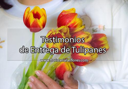 Testimonio de tulipanes a domicilio en Guatemala