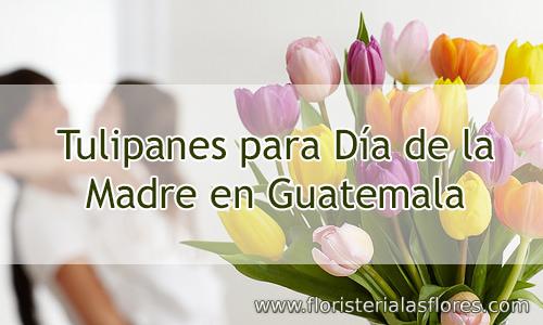 Venta de Tulipanes para día de la madre en Guatemala