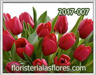 Tulipanes de color rojo