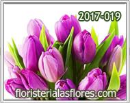 ramos de tulipanes con dos colores
