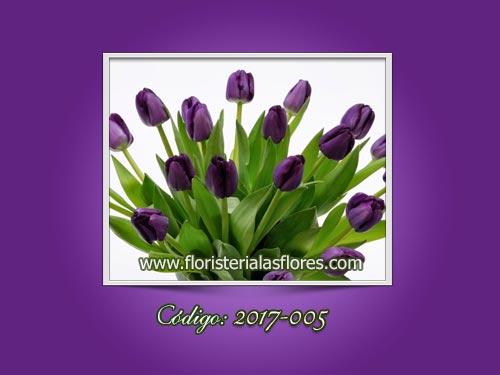 Tulipanes morados en Guatemala