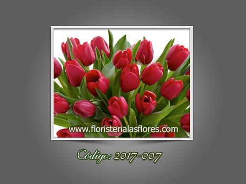 Tulipanes rojos en Guatemala