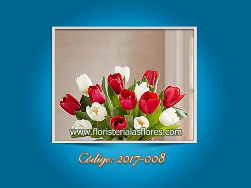 Tulipanes Rojos y Blancos