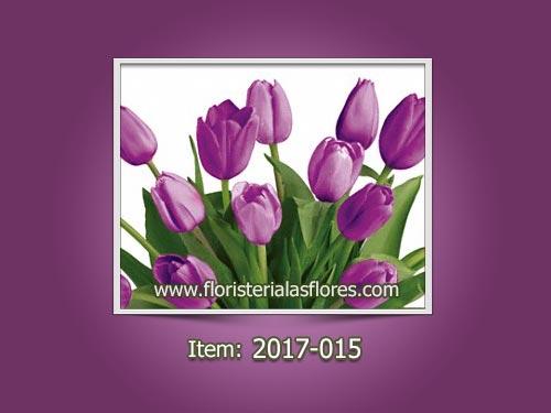Tulipanes En Zona 9