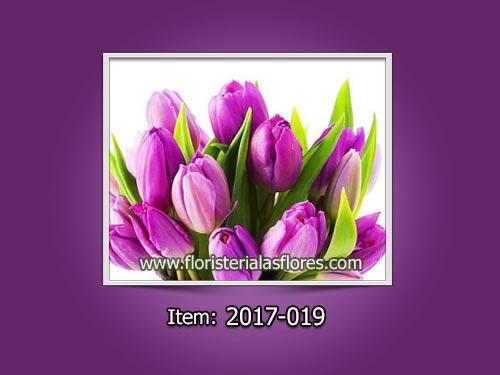 Tulipanes en Guatemala de color lila