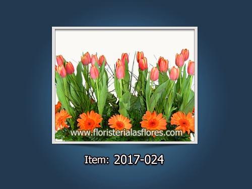 Venta de Arreglos de Tulipanes a domicilio en Guatemala